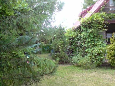 SEZON--2021--Samodzielny dom z ogrodzoną działką nad zalewem Sulejowskim