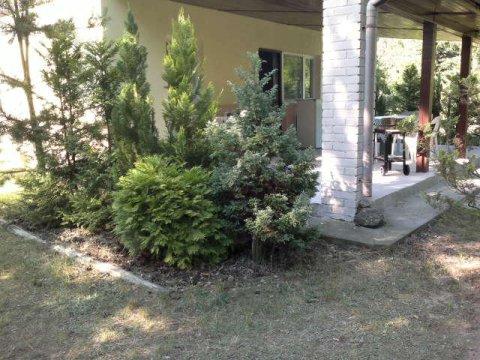 Sezon--2021--Samodzielny dom z ogrodzoną działką nad jeziorem Głuszyńskim