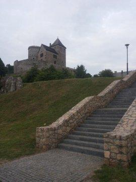 Zamek na górze zamkowej oddalony o 200 metrów od Siedliska