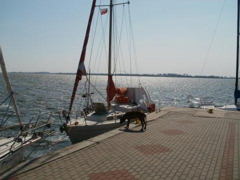 Międzywodzie - przystań żeglarska. - -100m od morza - TANIE domki.