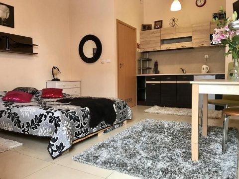 apartament Olek