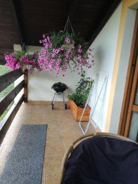 taras apartament