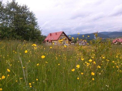 widok na domek z okalających łąk