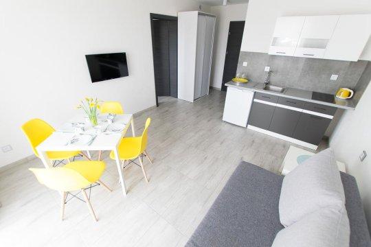 Apartament z aneksem kuchennym.