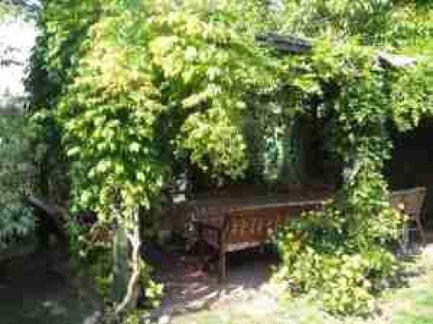 Villa pod Orzechem | Pokoje w zacisznej, zielonej okolicy, 30 km od Poznania