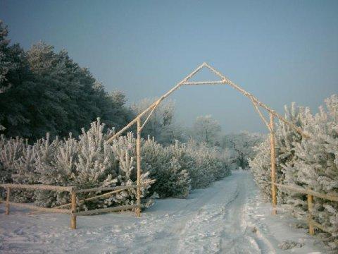 Zima. - Chata Na Skrzynce. Ekologiczny dom z drewnianych bali nad Jeziorem Powidzkim