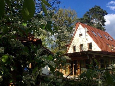Ogród. - Willa Danusia | Pokoje w cichej, parkowej części Milanówka