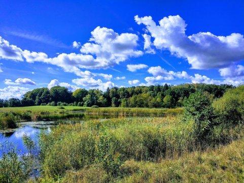 Rozlewisko rzeki Wel - Uroczysko Jakubowo z basenem