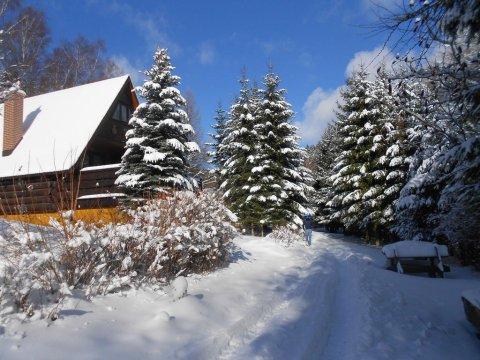 zima w Eko Bajce - EKO BAJKA Domki w górach, idealny dla rodzin z dziećmi, agroturystyka