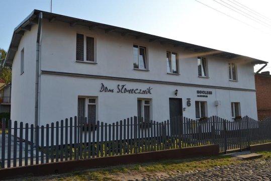 Słonecznik - Słonecznik - Gdańsk Oliwa blisko AWFiS,150 m przystanek autobusu