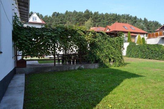 taras Słonecznik  - Słonecznik - Gdańsk Oliwa blisko AWFiS,150 m przystanek autobusu