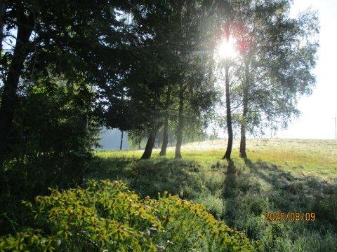 Widok z Willi - Ranczo w Rabe - Willa Pod Złotą Podkową
