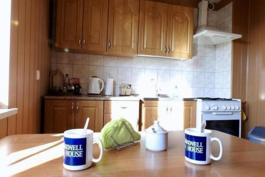 kuchnia dla gości -parter - Willa Monika