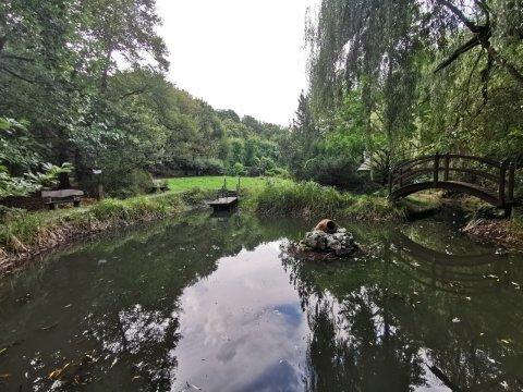 Ogrodzony Domek Samotnia w leśnym zaciszu