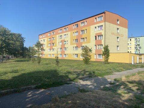 Słoneczny apartament nad zatoką