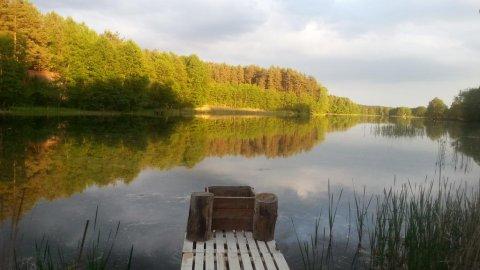 Kaszuby nad jeziorem Płęsno