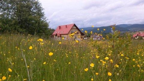 Domek Górski Strumień | Pokoje w doskonałej lokalizacji