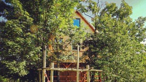 Leśny Domek dla 4 osób w Dolinie Harmonii. Zaśnij w konarach drzew.