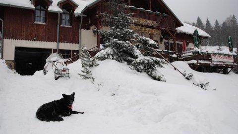 Gościniec pod Wyciągiem | Pokoje 150 metrów od wyciągu narciarskiego