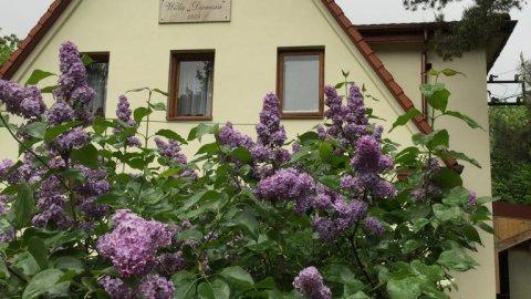 Willa Danusia | Pokoje w cichej, parkowej części Milanówka