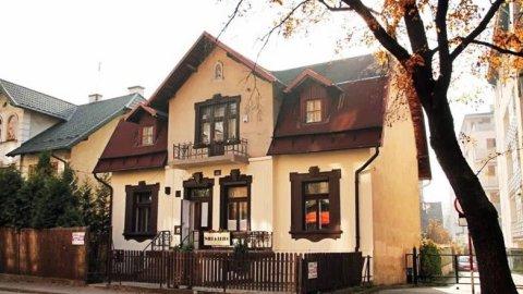 Willa Retro - Art Hostel. Prywatna willa w centrum z własnym ogrodem