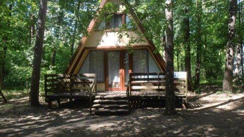 Ośrodek Wypoczynkowy w Wielonku I Zalew Koronowski, las, natura I