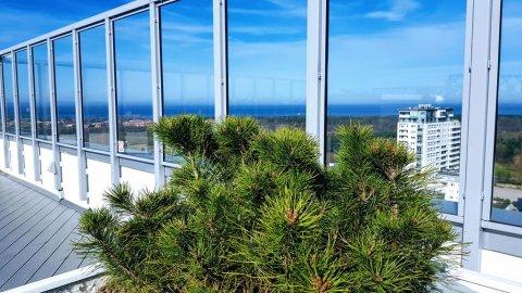 Apartamenty Morski Cztery Oceany-Spokojny doskonała lokalizacja,