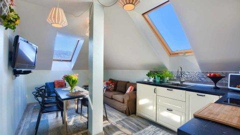 Apartament Bieszczadzkie Klimaty z widokiem na góry