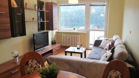 OliwaPark Apartment