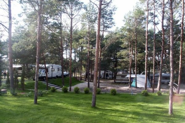 CAMPING I POLE NAMIOTOWE - Ginter Park